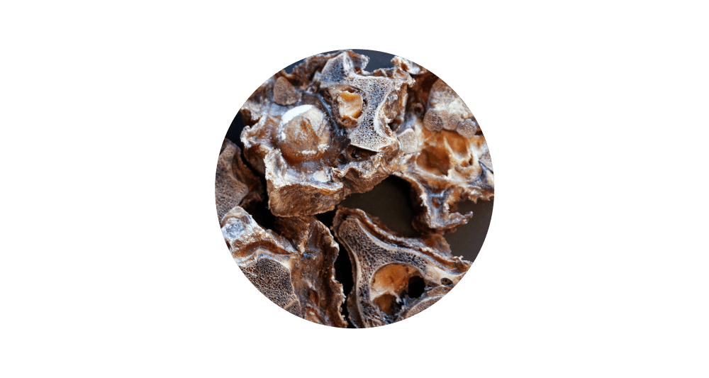 Product Image Circle Veal Neck format1000wcontent typeimage2 Fpng